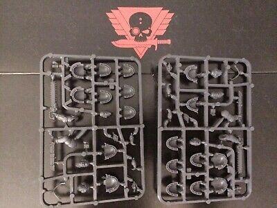2 Primaris Space Wolves Upgrade Sprue kill team Warhammer 40k Marines Wolf