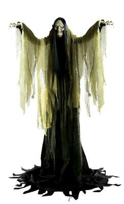 VIDEO LIFE SIZE ANIMATED 7' Hagatha Towering Witch Halloween PROP HAUNTED Spirit