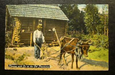 1910 Black Americana Postcard-Plowing With Ox On The Old Plantation