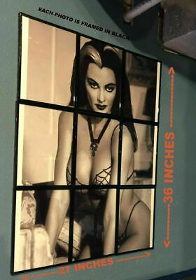 The Munsters Yvonne De Carlo Lily Munster Rasterbator Framed 27X36 Photo Poster