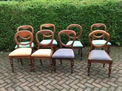 Collection of 8 Victorian balloon back chairs