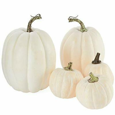 5 Assorted Size Harvest Off White Artificial Pumpkins Fall Thanksgiving Decor