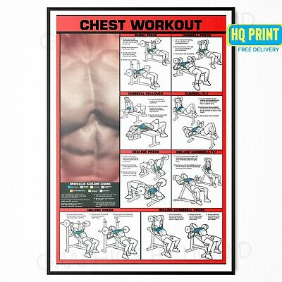 CHEST WORKOUT Bodybuilding Training Fitness Gym POSTER PRINT | A4 A3 A2 A1 |