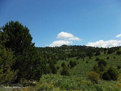 20.1 Acres Northern California Trees Views!