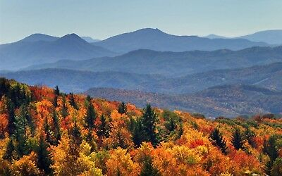 Oakmont Resort ~ 23,500 Rci Points~ Pigeon Forge Tennessee Timeshare
