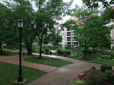 Wyndham Branson Meadows ~  105,000 Annual Points ~ Branson Mo Timeshare