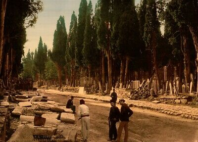 The Cemetery, Scutar, Constantinople, 1890's, Vintage Turkish Photography Poster
