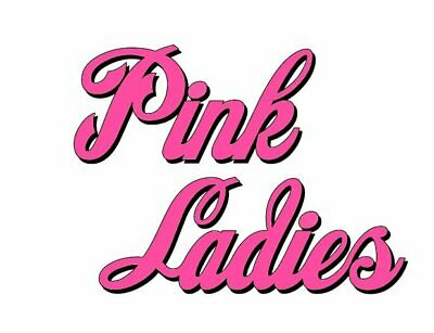 ****Grease Pink Ladies ***Fabric/T-Shirt Iron On Transfer