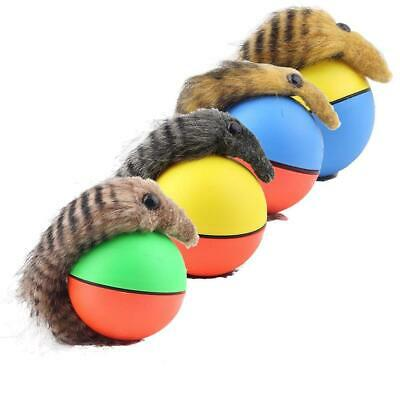 Dog Cat Weasel Motorized Funny Rolling Ball Pet Appears Jump Moving Alive Toy BR
