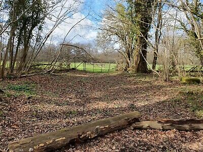 Land / Woodland in London Knockholt Inside London M25 - Freehold Absolute Title
