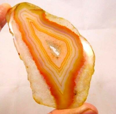 Natural Dyed Pair Of Botswana Agate Slice Mineral Specimen   145ct 85x45mm ND324