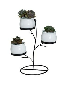 Iron Flower Rack Practical Exquisite Chic Creative Plant Display Rack for Office