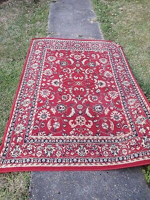 Carpet Indoor Living Room Rug - used but in good condition