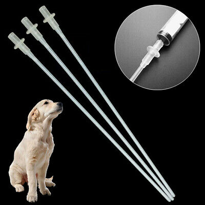 10/20PCS Canine Dog Goat Sheep Artificial Insemination Breed Whelp Catheter Rod
