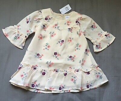 Baby Girl 12-18 Month Baby Gap Pink Floral Print Shear Bell Sleeve Dress