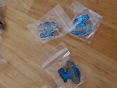 Six Flags Great Adventure collector pin.....Calypso Springs