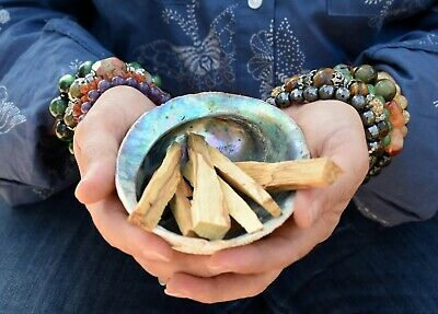 25 Fresh Palo Santo Wood Sticks (Bursera Graveolens) for Smudging Cleansing