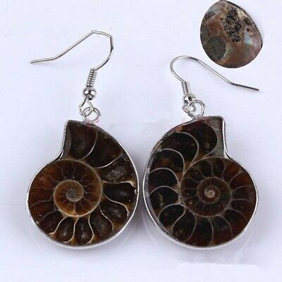 Ammonite Slice Shell Gemstone Dangle Natural Hook Earrings 1Pair