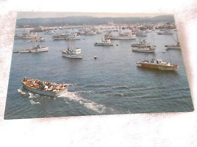 MONTEREY CALIFORNIA-1960's FISHING FLEET- color photo postcard