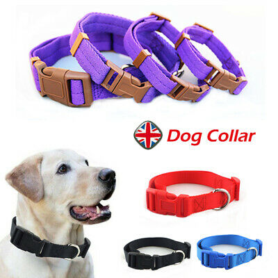 Adjustable Dog Puppy Collar Nylon Soft Padded Personalized Pet Accessories UK