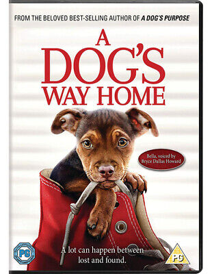 A Dog's Way Home DVD (2019) Jonah Hauer-King, Smith (DIR) cert PG Amazing Value