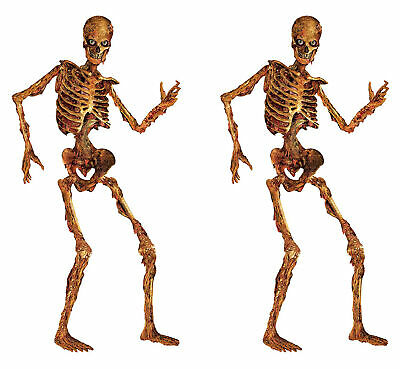 LIFE SIZE JOINTED SKELETON 6' Halloween Party Prop Decoration Skeletons 2 PCS