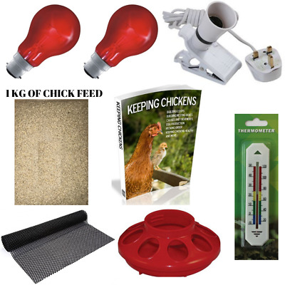 A Brooder Starter Kit Great For Chicks Ducklings And Quails Chick Feed Heat Lamp