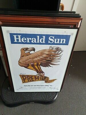 2014 Afl Grand Final Premiers Hawthorn Hawks Premiership Mark Knight Weg Framed