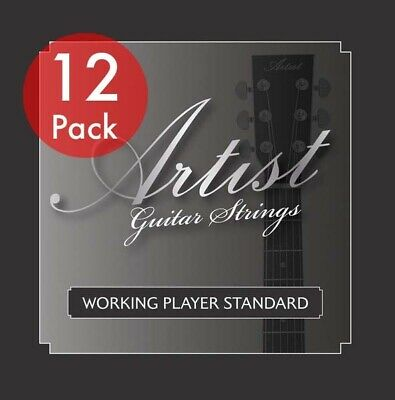 Artist ACST1253 12 Sets of Acoustic Guitar Steel Strings 12-53 - New