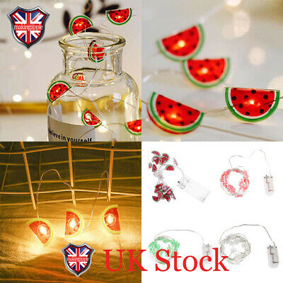 20 LED Copper Wire Micro String Lights Battery Powered Indoor Fairy Lamp 6 Model