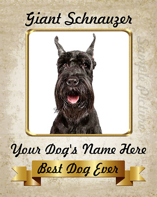 Giant Schnauzer Dog Personalized Art Home Decor Printed 8X10 Photo Picture