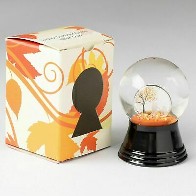 """2018 $1 Cook Islands Indian Summer """"Snow"""" Globe 1/10oz .999 Silver Proof Coin"""