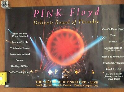 Pink Floyd Delicate Sound Of Thunder poster