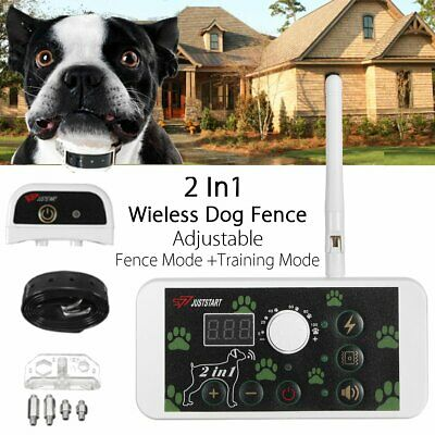 Outdoor Wireless 1 Dog Training Shock Collar Fence Pet Electric Trainer
