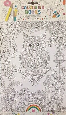 Adult Mindfulness Colouring Book 6 A4 Sheets - Garden And Forest Animals Owl
