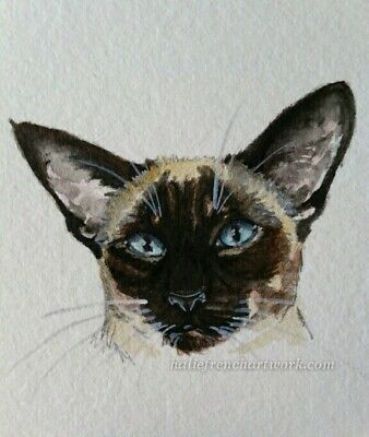Original Watercolor Painting ACEO Seal Point Simese Cat Pet Artist Halie French