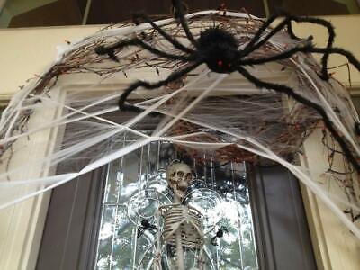 enhoo Halloween Spider Decorations, Giant 59 inch Scary Hairy Realistic Spiders