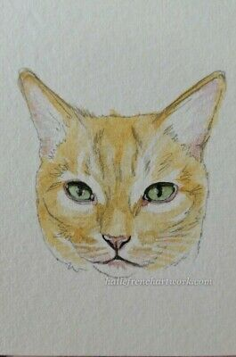 Cat aceo Flame Point Siamese Watercolor Painting Original Pet Art HalieFrench