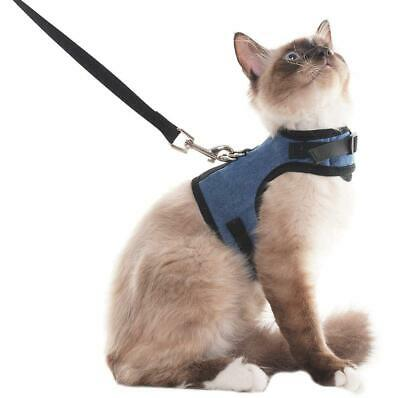 SCENEREAL Escape Proof Cat Harness and Lead - Adjustable Soft Mesh Medium