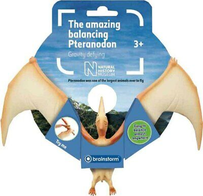 Brainstorm Children Toys Natural History Museum The Amazing Balancing Pteranodon