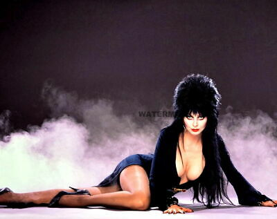 Sexy Hot Elvira Mistress Of The Dark Halloween Publicity Photo 03