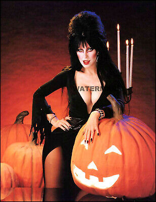 Sexy Hot Elvira Mistress Of The Dark Halloween Publicity Photo 04