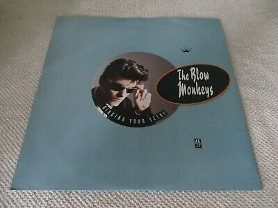 "The Blow Monkeys ‎– Digging Your Scene    Vinyl 12"" UK 1986 Pop   RCA - PT40600"