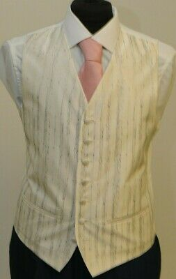 W - 1020 Mens/Boys Ivory With Silver Detail Waistcoat Formal/Prom/Wedding