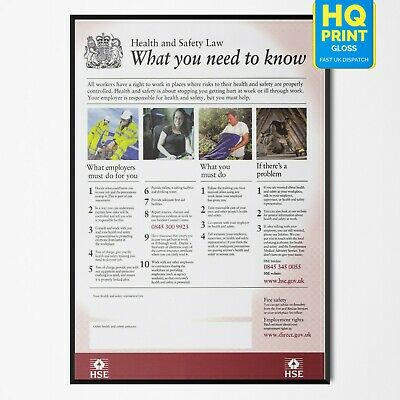 HSE Health & Safety Medical Educational UK Poster Art Print   A4 A3 A2 A1  