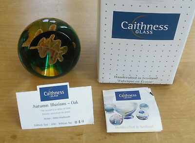 """Boxed Ltd Ed Caithness """"Autumn Illusions - Oak"""" Paperweight (40/650)"""