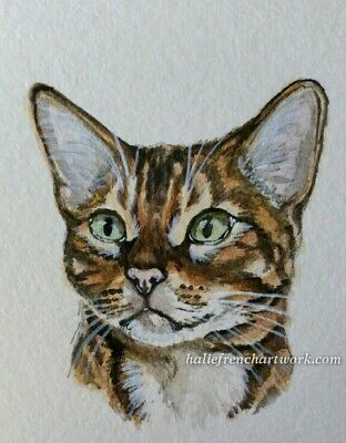 ORIGINAL WATERCOLOR PAINTING ACEO CAT Gold Bengal PORTRAIT Pet Art Halie French
