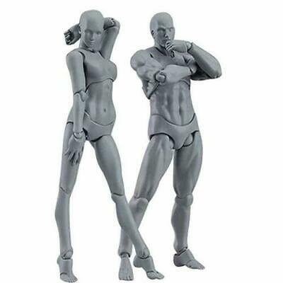 brand new 2.0 Body Kun Doll PVC Body-Chan DX Action Figure Model Drawing For SHF