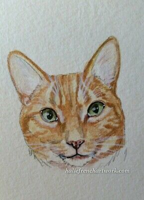 ORIGINAL WATERCOLOR PAINTING ACEO CAT FLAME POINT ORANGE TABBY ART Halie French