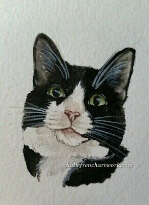 ORIGINAL WATERCOLOR PAINTING ACEO CAT PET PORTRAIT BLACK & WHITE ART HalieFrench
